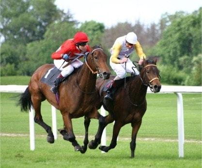horseracing[1]