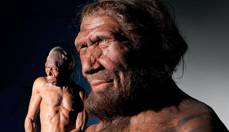 Photo of نظرية التطور: تطور الإنسان 1، مقابلة مع د. فيصل الصايغ